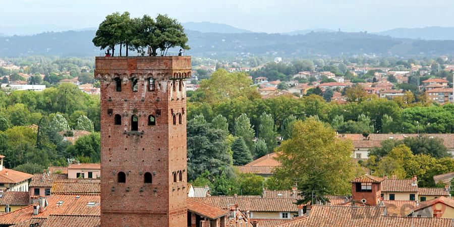 Guinigi's Tower - Torre Guinigi